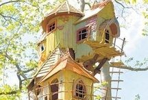 HOMES OF OUR FEATHERED FRIENDS