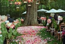 Outdoor Weddings / Our ideas for an amazing outdoor wedding!