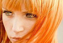 エレクトリックタイガーリリー / タイガーリリーの花言葉「生命力、先駆者、勇気、奇想天外 」 イメージの赤系オレンジ!