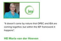 Testimonials / Testimonials on the IEF from key energy players