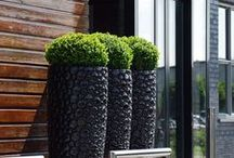 Landscape & Gardens / Landscaping and garden ideas that are consistent with a contemporary home. www.ariades.com
