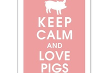 All thing Piggy / by Lorna Madsen