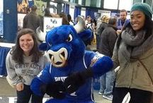 What's Happening at UB / Want to know what's happening at the University at Buffalo (UB)? Check and pin #ubuffalo here. / by University at Buffalo