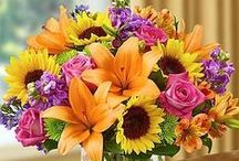 Fall & Thanksgiving Flowers & Gifts / Fall Flowers are bold and beautiful this time of year!  We offer same day delivery to anywhere in the USA!