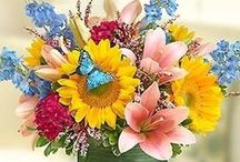 Spectacular Summer Flowers / Beautiful summer luxury flowers, gorgeous Ecuadorian roses and beautiful hydrangea and azalea plants; all on sale!