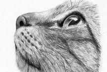 Cat Art / #pencils #graphite #watercolors #drawing #painting #cute #cats #kitten #art