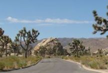 29 Palms, California / Information for fitness, recreation and food reviews for the city of 29 Palms, California.
