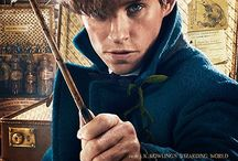 Fantastic Beasts and Where to Find Them / A spin off series in the Harry Potter world. Favourite Characters: I absolutely adore Newt! Favourite Quote: My philosophy is that worrying means you suffer twice.