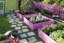 Jardineria - Huerta - plantas y otras hierbas :) / by Lorena Aguirre