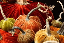 ⊱◦ bountiful harvest ◦⊰ / bountiful ᎻᎯℜᏤᙦᎦᏖ: HARVEST TIME, AUTUMN, THANKSGIVING, ....