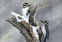 Art - Birds / by Ulrike Grace