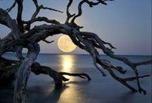 The earth, sun, moon and stars