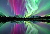 Yukon / by Discover Canada Tours