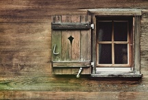 Doors and Details / by Tony Moxley