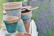 Interior plants, garden, outwards / Garden, outward, plants, vases, flowerpots & everything green