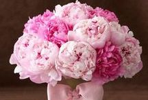 Think pink / All the pink and romantic stuff for ladies for instant feel good mood.