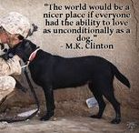 Dog Quotes & Chuckles / Do you love dogs, quotes, and dog quotes? This is the board to follow!
