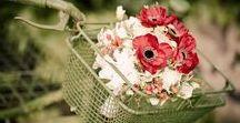 Poppy Red Wedding / Svatba inspirovaná tématem vlčí mák