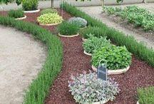 Bahçecilik / Bahçe hakkında yapabileceğin şeyler,minik bahçeler