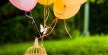 Motýlková zahrada / Motýlková zahrada - narozeninový piknik pro malou Amálku s rodinkou