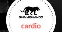 Cardio / Everything to do with cardio and HIIT found here.