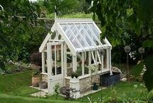 Greenhouse dreams / It's really moved beyond the 'dream' category and has become a goal. I already have the old windows.  Soon...! / by Saint Claire Cottage
