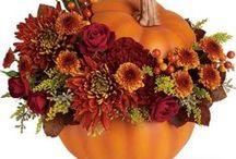 Autumn Decorating / Autumn, fall, autumn decorating, fall decorating, fall harvest, diy fall decorating, diy fall, diy autumn