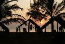 Indien - Kerala & Tamil Nadu / Reiseziel Indien - Süden