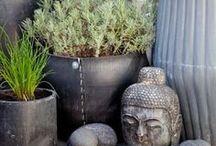 Intérieurs Balinais