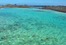 Corralejo beaches