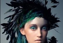 Inspiration  | Feathers photo