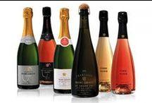 Francouzská vína / Dodavatelé pro nás vytipovali vína od svých osvědčených vinařů.  Nabízíme vína z oblastí Francie, jako jsou Beaujolais , Bourgogne, Côtes du Rhône a Val de Loire. Nabízíme vína červená, vína bílá i vína růžová.  Vína jsou často vhodná k dlouhodobější archivaci a proto si své víno můžete ochutnávat a hodnotit v průběhu let.