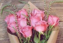 Rose / Indulge in one of Jurlique's key ingredients - Rose!