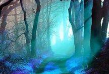 Magic pathways... / The path to magic....