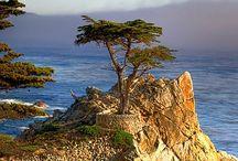 Nature / Jolis endroits qui font rêver...