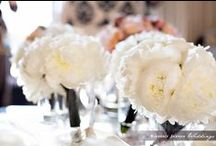 Winter Wedding / Inspiration for your dream winter wedding.