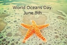 Save our Oceans / Learn how you can help protect our oceans!