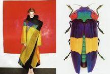 Colour / Colour / by Didem Amanat Dülger