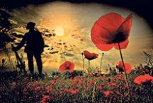 Least We Forget / I believe that we shouldn't forget. The men and women who lost their lives in the war, The land that was destroyed. The ties that were lost between countries. So it doesn't happen again, we remember.