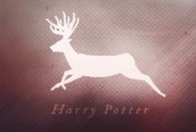 Harry Potter <3 / First chapter book I ever read;  Harry Potter and the Philosophers Stone.  Second chapter book I ever read; Harry Potter and the Chamber of secrets. Third;  .... You can guess the rest. And now I'm teaching my brother to read!! Just imagine ....