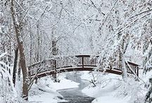 Winter / This board is about all the amazing winter pictures and things that I think deserve to be seen :) Enjoy