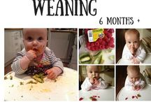 Baby Led Weaning 6-12 Months / Ideas, ticks, tips and recipes for Luisas BLW journey