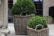 Garden inspiration & outdoors