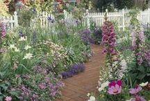 Tuin / Tuindecoratie en tuinieren