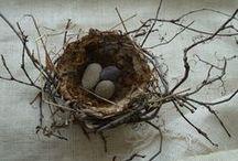 ..nest..