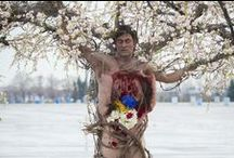 macabre (gruesome scenes) / Warning : for horror's sake
