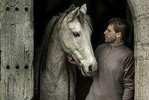 koně...srdeční záležitost ;-)
