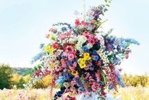 květena / kytičky,kytice....
