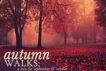 In Awe of Autumn / by Melissa Graham