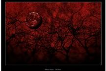 Super Cool BLOOD MOONS / Every struggle in the Blood Curse Series is a result of an ancient Curse...and it all starts with a familiar omen: a darkening sky, the sudden appearance of a mystic constellation, and the resulting, thirty-day Blood Moon.